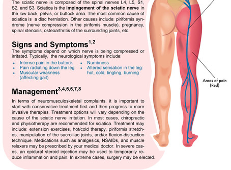 You have pain down your leg. Is it SCIATICA?