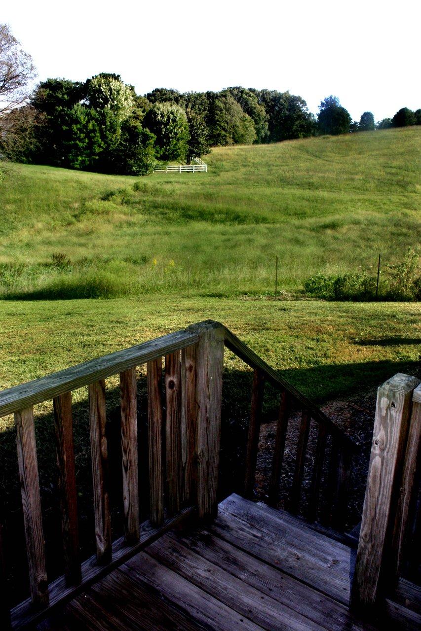 Private Deck & View