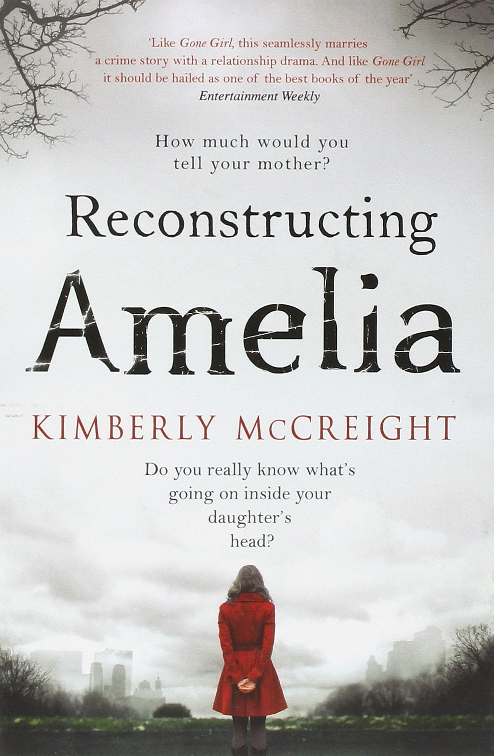 Reconstructing Amelia by Kimberly McCreight : the book slut book reviews thrillers thebookslut