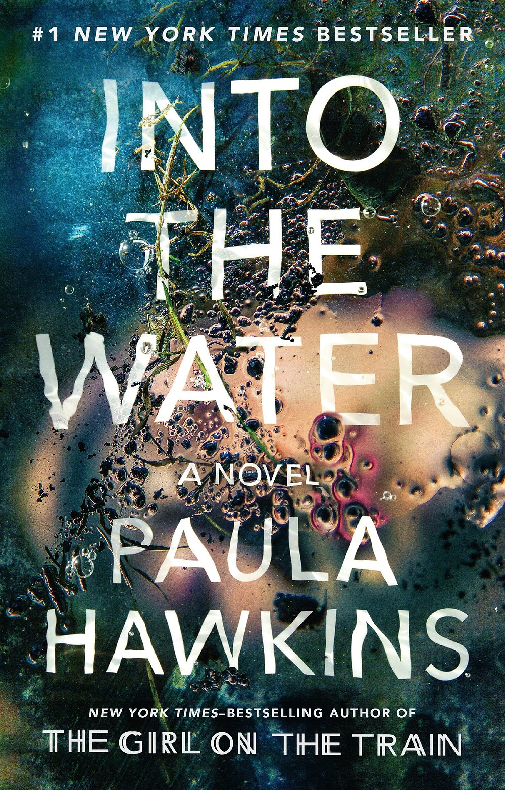 Into the Water by Paula Hawkins : the book slut book reviews thebookslut thrillers