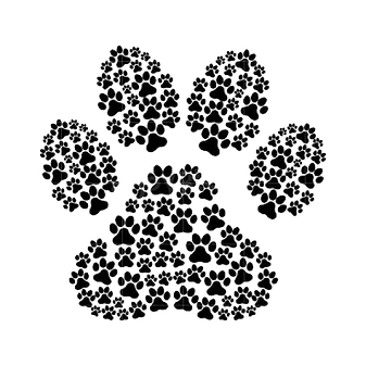 paw of paws.png