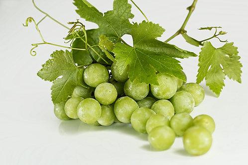 שמן זרעי ענבים ליטר