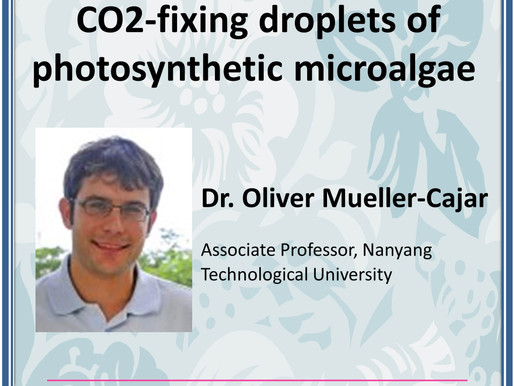 [Lecture] Dissecting pyrenoids: the CO2-fixing droplets of photosynthetic microalgae