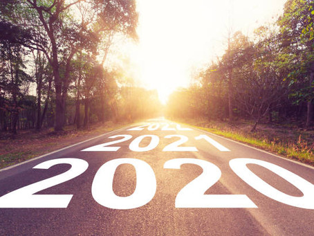 What does the Government's response to 2020 tell us about how they might handle the climate crisis?