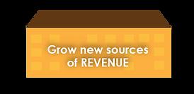 Grow new sources of REVENUE