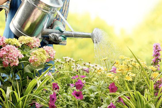Watering-Flowers-copy.jpg