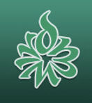 SEED Client - Muslim Women's Institute for Research & Development