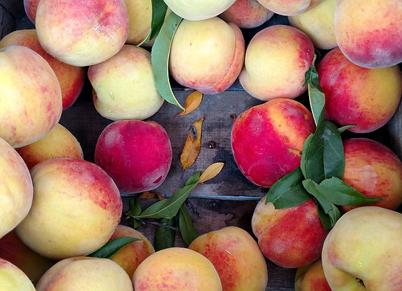 Ohio Crest haven Peaches