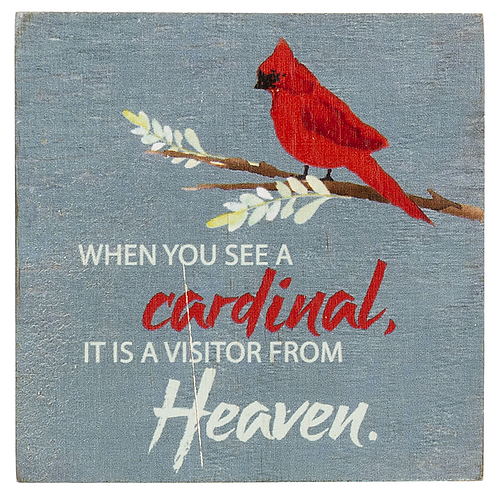 Block Talk - When you see a Cardinal