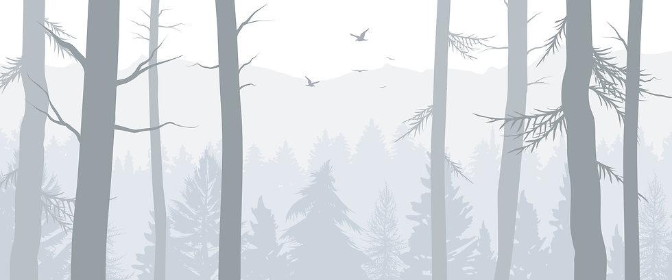 forest1_Mesa de trabajo 1.jpg