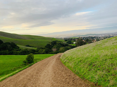 5 Most Popular Hikes in California According to AllTrails