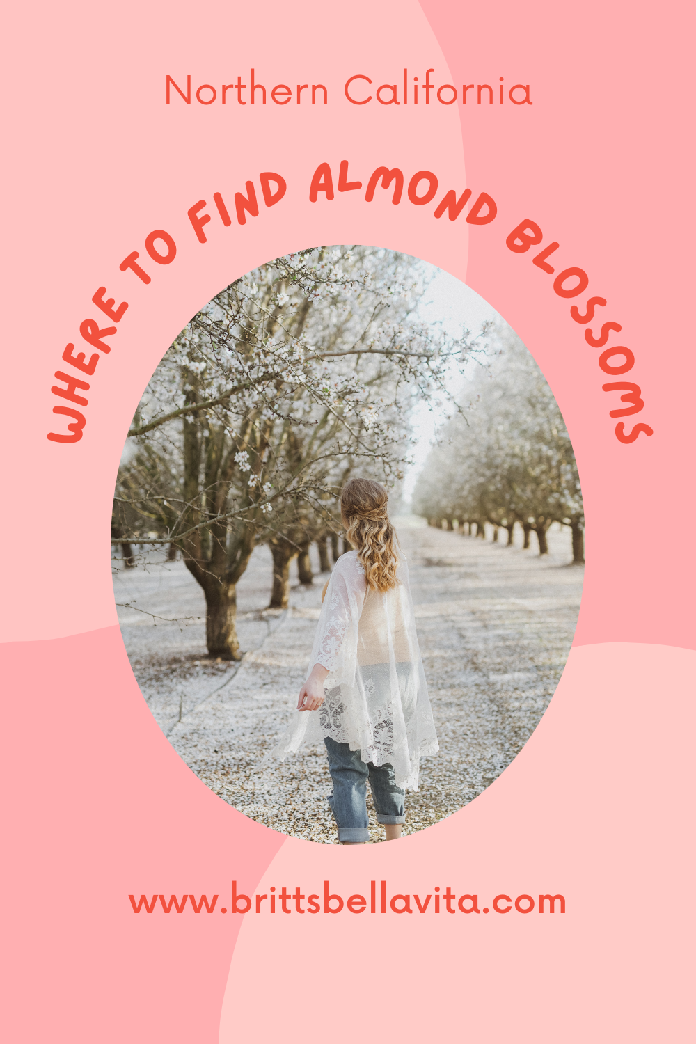 Almond Orchards in Woodland, California