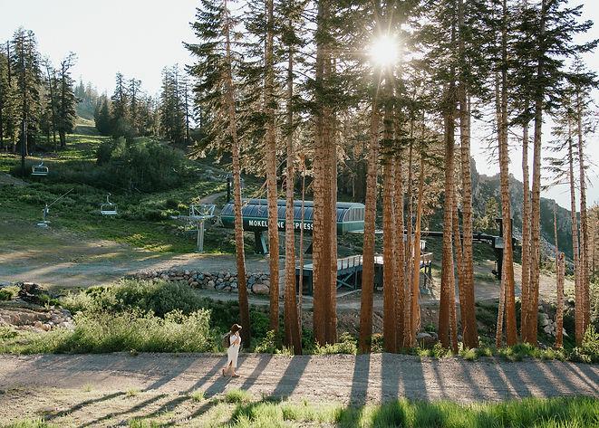 Glamping Tents Bear Valley Resort Alpine County California-06.jpg