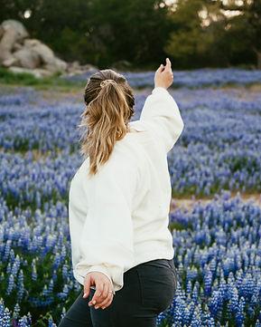 lupine flower fields california.jpg