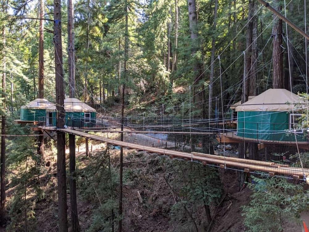 Sonoma Zipline Adventures Treehouse Glamping Tents