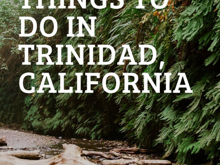 Things to Do in Trinidad, California