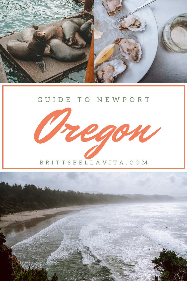 Guide to Newport Oregon - the coast, food and harbor seals