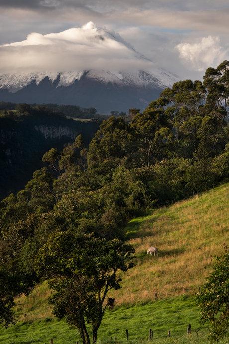 Ecuador-22.jpg