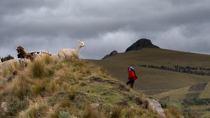 Ecuador-84.jpg