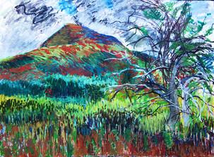 """Mt. Norwottuck and Apple Tree,"" Holyoke Mountain Range, Amherst, MA"