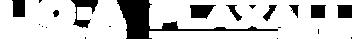 plaxall-lica-logo.png