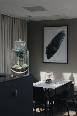 Terrarium dans une cuisine et salle de restauration à Lyon, Rhône Alpes France