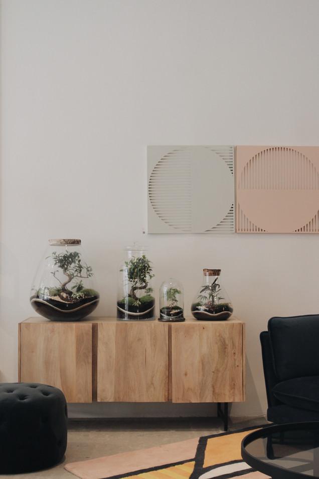 Terrariums Onno dans un showroom à Lyon, Rhône Alpes, France