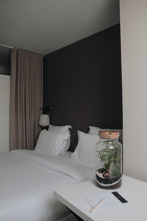 Terrariums Kirindy à côté d'un lit dans une chambre d'hôtel à Lyon, France, Rhône Alpes