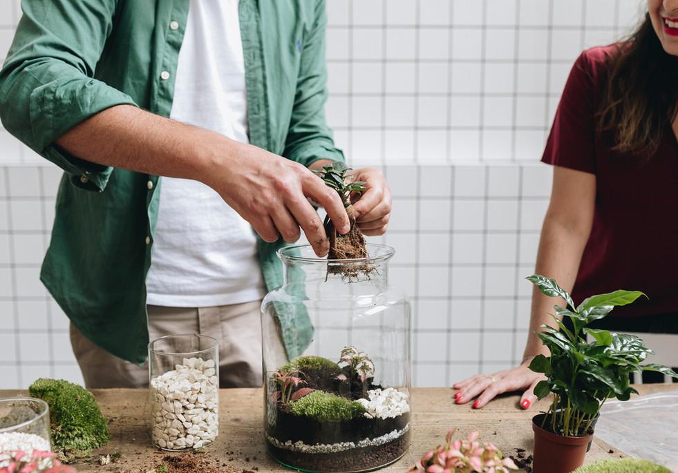 Installation des plantes tropicales dans un contenant en verre lors d'un atelier DIY terrarium à Lyon, Rhône Alpes, France