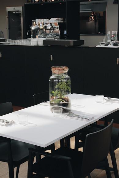 Terrarium Kirindy sur une table d'hôtel