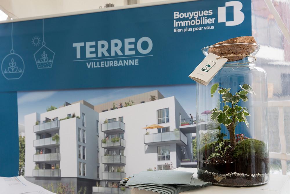Terrarium Onno Papeete Villeurbanne Bouygues