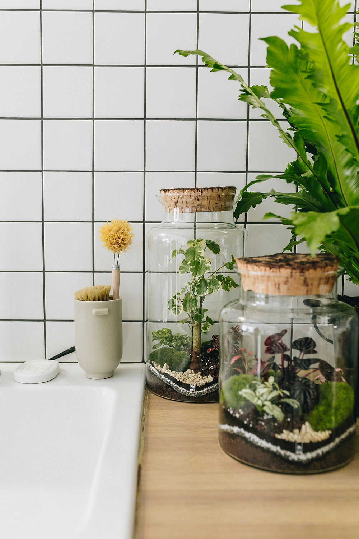 Atelier Maison Écologique avec The Greener Good