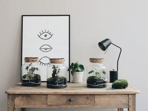Samedi 15 septembre : participez à notre nouveau format d'atelier terrarium DIY