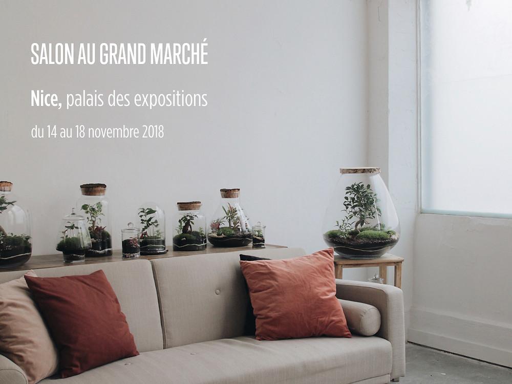 Salon Au Grand Marché de Nice du 14 au 18 novembre avec les terrariums Onno