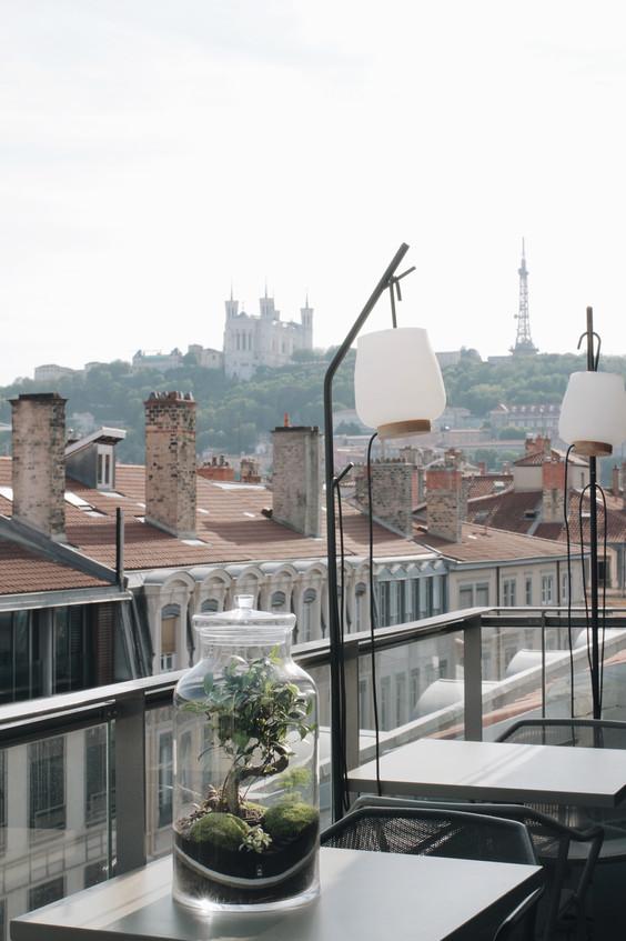 Terrarium Bali sur la terrasse de l'hôtel Maison Nô à Lyon, Rhône Alpes,  France