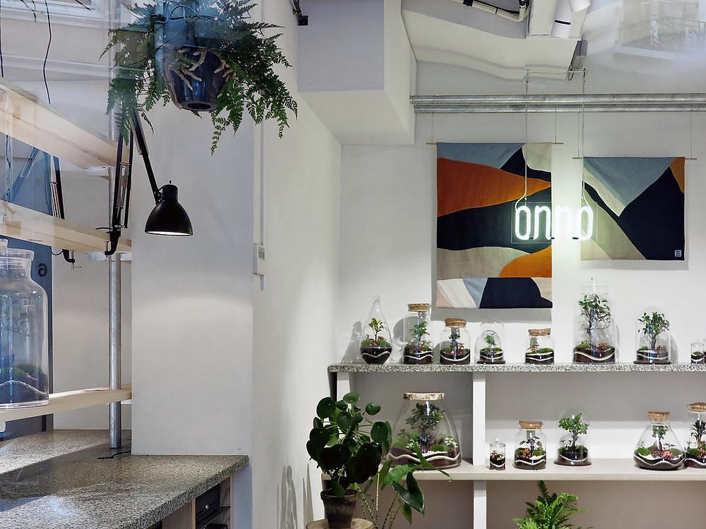 boutique Onno de terrariums et de plantes, à Lyon, Rhône Alpes, France