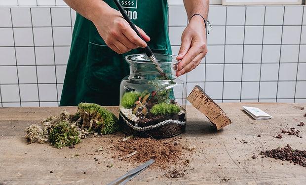 Atelier DIY terrarium à Lyon Rhône Alpes France pour des entreprises, agences de conseils et évènementiels et particuliers : inauguration, team building, soirée d'entreprise, lancement de produit, mariage, enterrement de vie de jeune fille (EVJF)