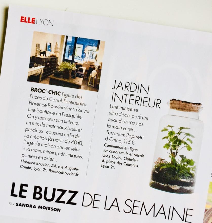 Magazine Elle du 2 mars rubrique Buzz de la semaine avec les terrariums Onno à Lyon