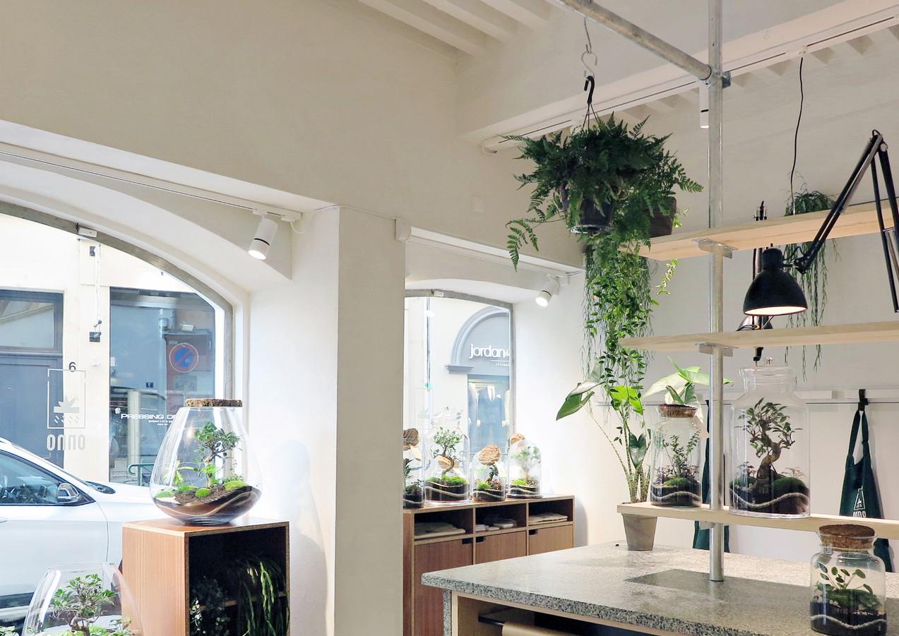 Atelier Boutique Onno à Lyon, Rhône Alpes. Décoration végétale, plantes, et animation d'ateliers DIY