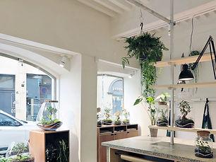 Atelier boutique de terrarium, décoration végétale et de plantes à Lyon, Rhône Alpes, France ouvert sur la presqu'île de Lyon au 7 rue du plâtre.