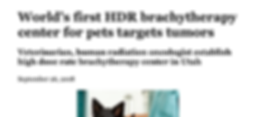 06_Button_Article_VeterinaryPracticeNews