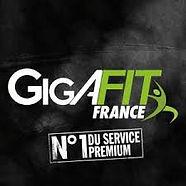 Gigafit logo.jpg