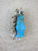 poppetje blauw
