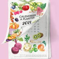 Un calendrier à planter PAPIERFLEUR