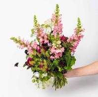 Un bouquet de fleurs locales et de saison FLEURS D'ICI