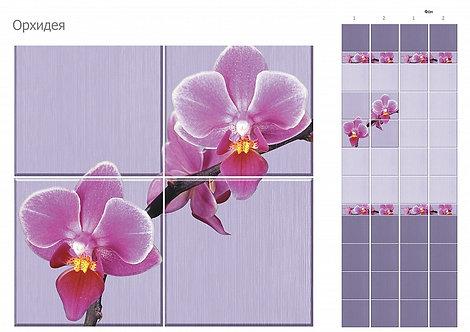 UNIQUE Орхидея