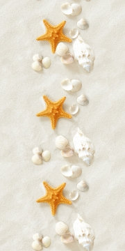 "Морские звезды ""Классика"""