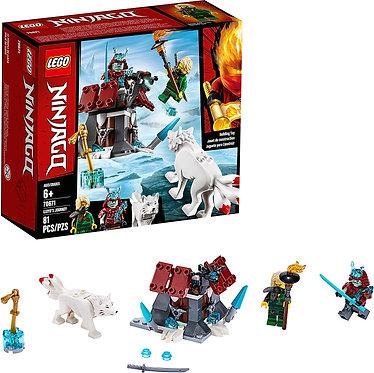 LEGO® NINJAGO®: Lloyd's Journey (70671)