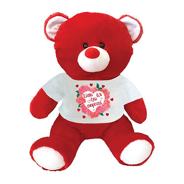 Αρκουδάκι με μήνυμα αγάπης - 49cm