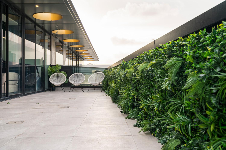 Elsa_Clinic_outdoor_terrace